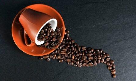 Кофе: польза или вред для организма?
