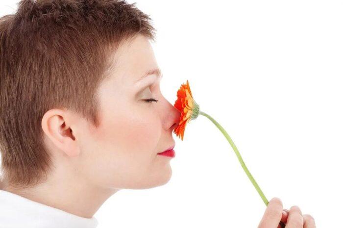 5 любопытных фактов о человеческом носе