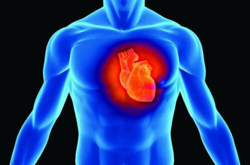 10 познавательных фактов о сердечных приступах