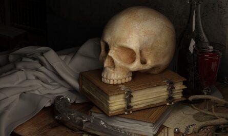 5 любопытных фактов о человеческом черепе