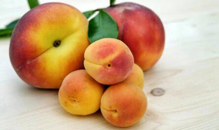 5 любопытных фактов о ягодицах, которые многие не знали