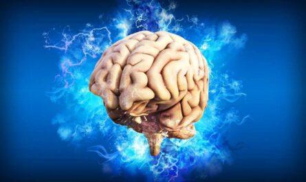 10 психологических фактов, которые помогут лучше узнать себя и окружающих