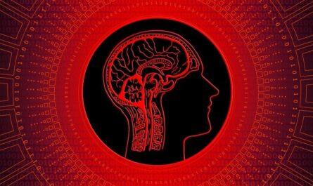 Обман мозга: Феномен Баадера - Майнхоф