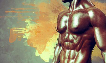 5 интересных фактов о мускулатуре человека