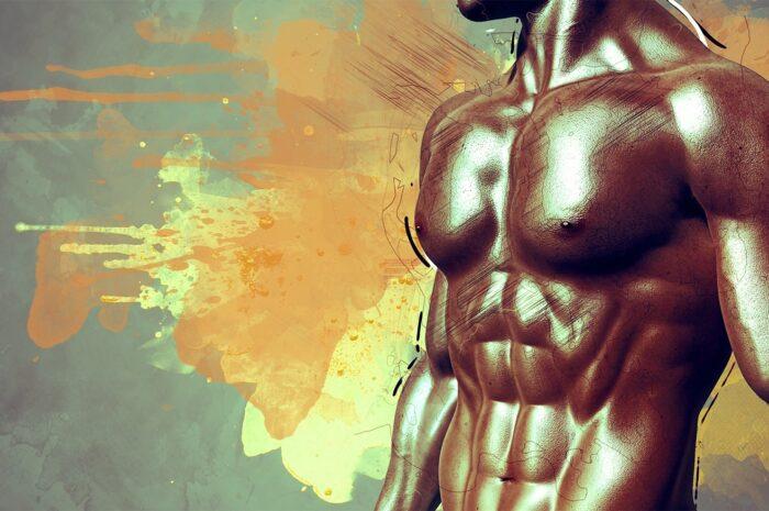 5 интересных фактов о мышечной системе человека