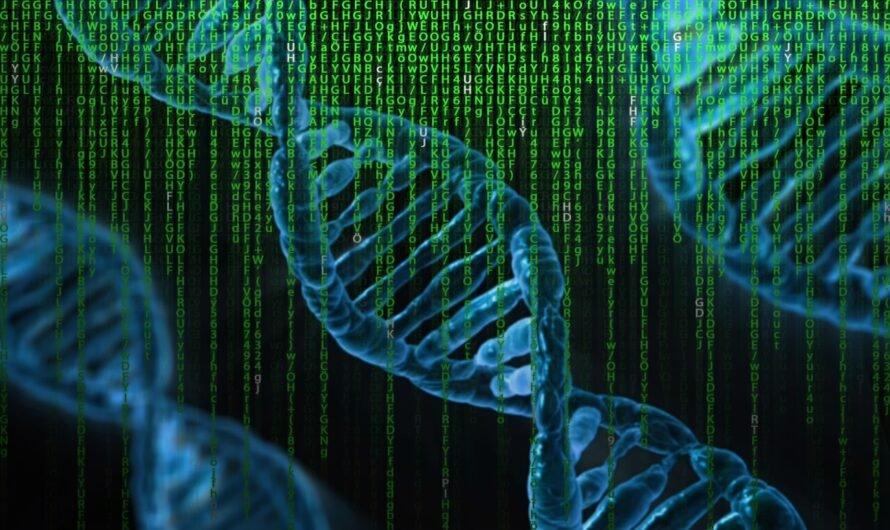 Самые интересные факты о ДНК