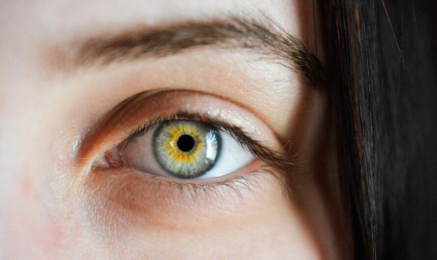 15 интересных фактов о глазах человека
