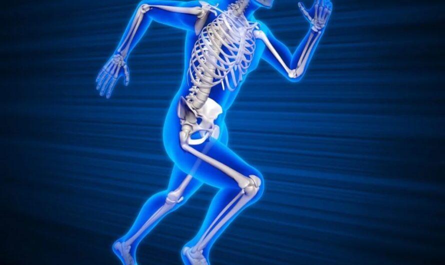 Роль кальция в организме человека