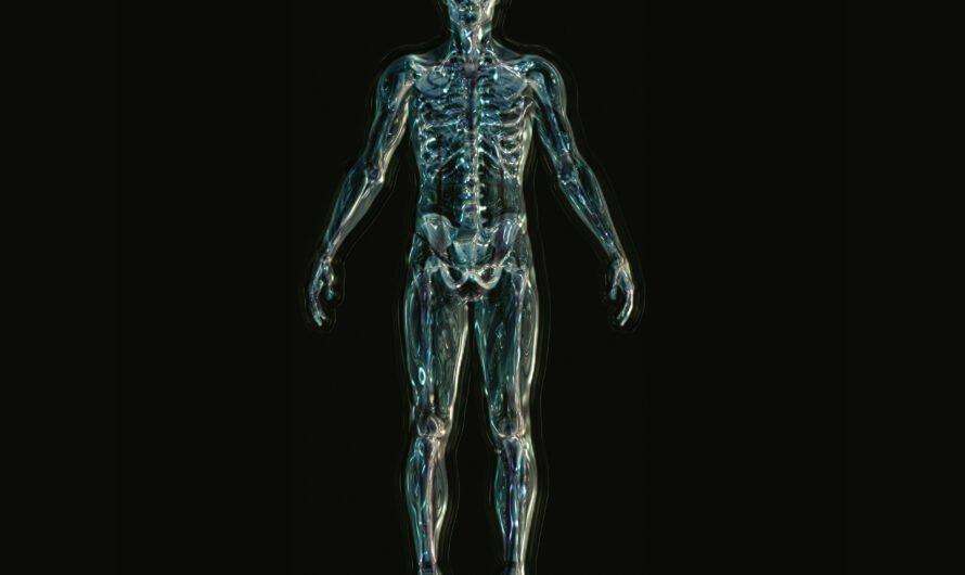 15 интересных фактов о костях человека