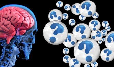 """Экспериментальное лечение """"замораживает"""" болезнь Альцгеймера у обезьян, скоро начнутся испытания на людях"""