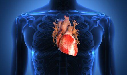 15 важных фактов о здоровье сердца