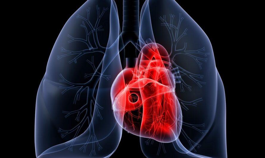 8 простых способов предотвратить болезни сердца